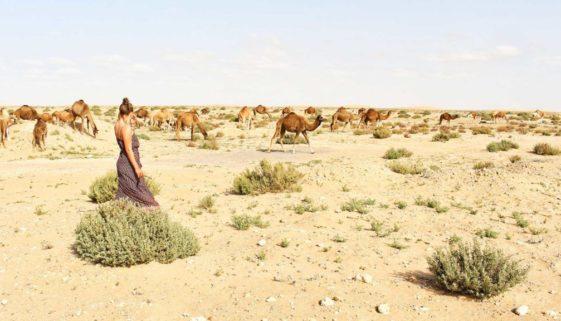 blog maroko weef míň věcí víc zážitků